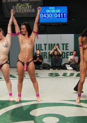 Групповая борьба телок на ринге