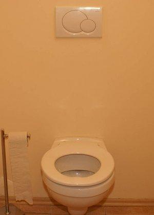 Зрелая блядь часто заходит в этот туалет, в котором из дырки часто появляется хуй