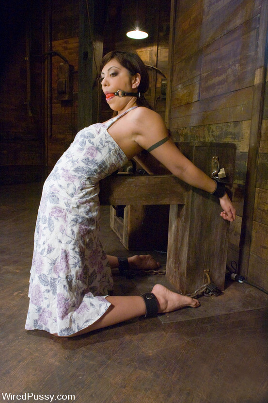 Sasha Grey, Satine Phoenix - Галерея 3331510