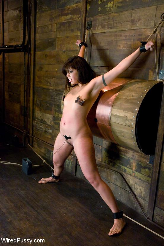 Sasha Grey, Satine Phoenix - Галерея 3346113