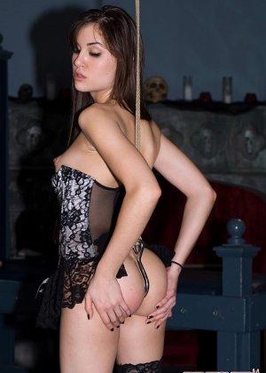 Sasha Grey - Галерея 3298899 - фото 1