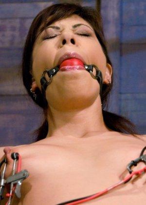 Sasha Grey, Satine Phoenix - Галерея 3346113 - фото 2