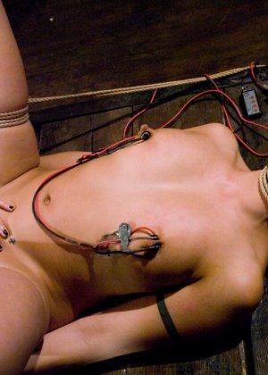 Sasha Grey, Satine Phoenix - Галерея 3341302 - фото 12