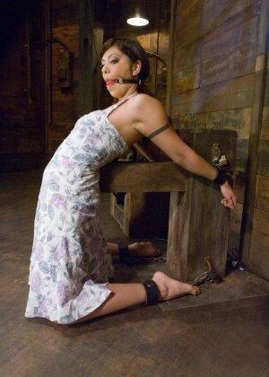 Sasha Grey, Satine Phoenix - Галерея 3341302 - фото 1
