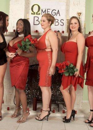 Sabina Leigh, Gianna Michaels, Panther, Tera Cox, April Mckenzie, Gianna Rossi - Галерея 3445078 - фото 3