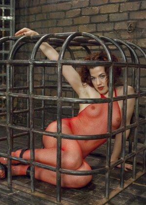 Ингрид Маус сначала трахают машиной в клетке, но за хорошее поведение ее выпускают и имеют также в попку - фото 2