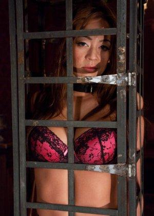 Стив Холмс приобрел себе  грудастую азиатскую шлюху Миа Лелани и готов ее испробовать - фото 4
