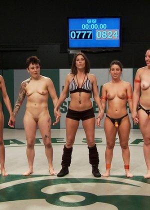 На ринге состоялась массовая лесбийская оргия похотливых девчонок - фото 2