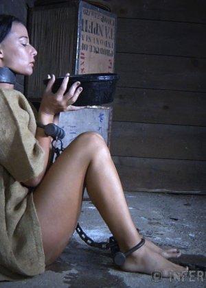 Девушка выдерживает множество испытаний, но так и не дожидается секса – она очень терпелива - фото 3