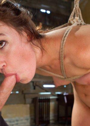 Эта самка любит боль во время секса, она разрешила себя связать и потом рыдала от оргазма - фото 12