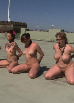 Несколько развратниц подставляют свои тела для сумасшедших испытаний и готовы вытерпеть многое - фото 5