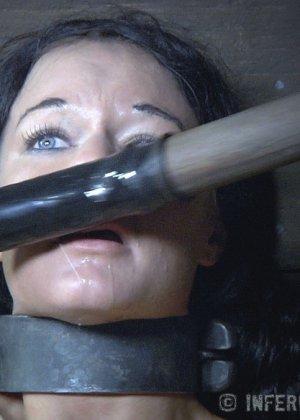 Девушка выдерживает множество испытаний, но так и не дожидается секса – она очень терпелива - фото 8