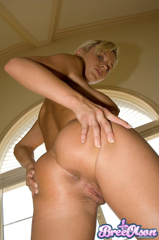 Bree Olson - Галерея 3108379