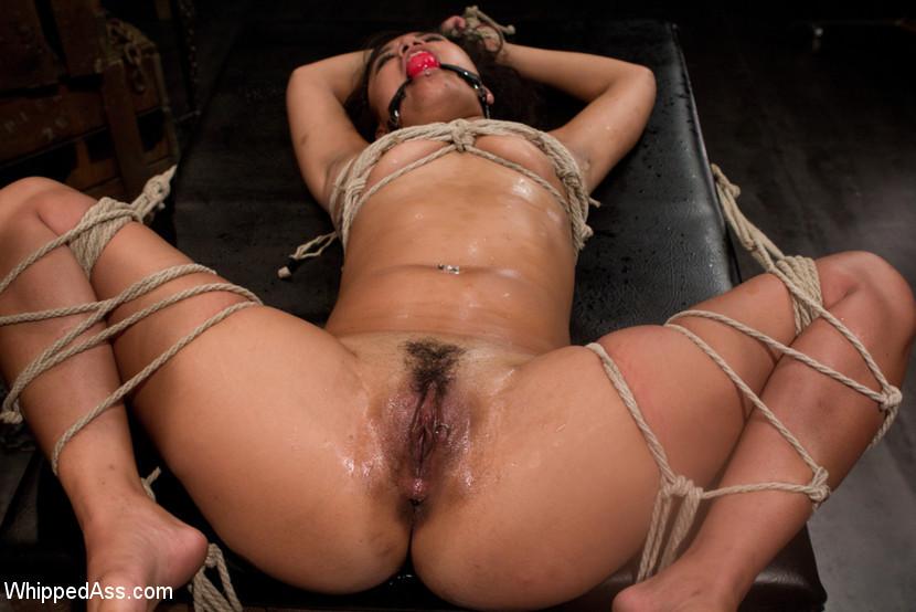 Bobbi Starr, Annie Cruz - Галерея 3397963