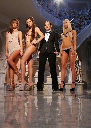 Sammie Rhodes, Nina James, Malena Morgan, Dani Daniels - Галерея 3500124 - фото 1