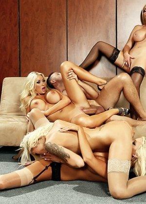 Nikki Benz, Summer Brielle, Courtney Taylor, Nina Elle - Галерея 3454414 - фото 14