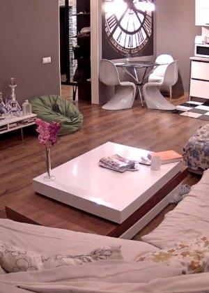 Скрытые камеры зафиксировали секс в неожиданных местах в квартире - фото 2