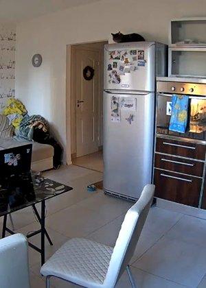Спрятанная камера постоянно снимает дом и находящихся в нем парней и девушек - фото 62