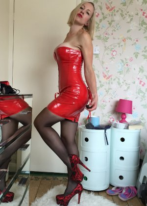 Шлюховатая жена примеряет на себя разные наряды для секс игр - фото 1