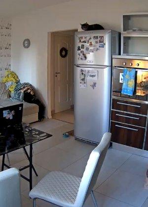 Спрятанная камера постоянно снимает дом и находящихся в нем парней и девушек - фото 59