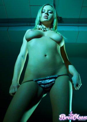 Bree Olson - Галерея 3115376 - фото 9