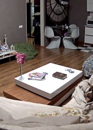 Скрытые камеры зафиксировали секс в неожиданных местах в квартире - фото 34