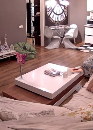 Скрытые камеры зафиксировали секс в неожиданных местах в квартире - фото 9