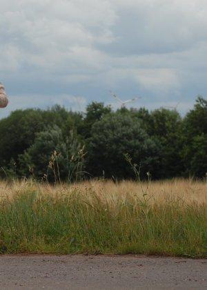 Девушка обнаженной вышла в поле ради отличных снимков - фото 29