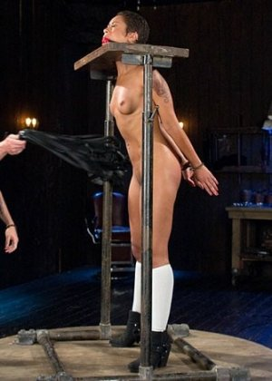 Skin Diamond, The Pope - ������� 3480594