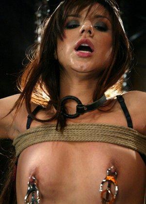 Nadia Styles, Tory Lane - Галерея 3443603 - фото 6