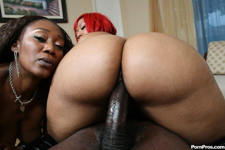 черные большие жопы фото порно