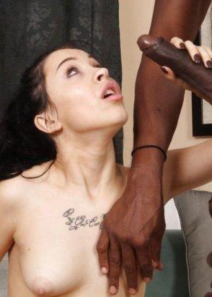 Худая брюнетка получает большим черным хуем в рот и пизду - фото 11