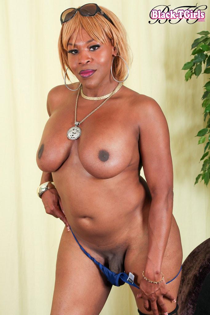 Barbie Que - Галерея 3455593