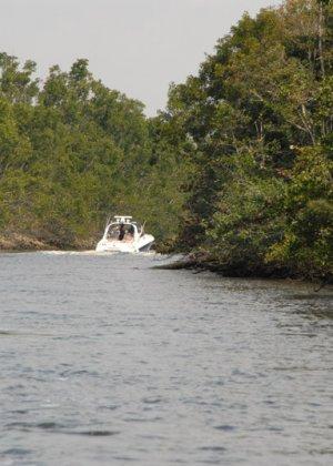 Сисястая блондинка сосет хуй в лодке - фото 9