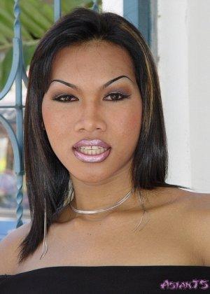Фото члена азиатского транссексуала Викки - фото 1