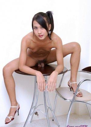 Порно фото азиатского транссексуала - фото 6